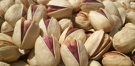 pistachio suppliers