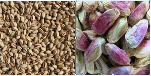 pistachio suppliers in india