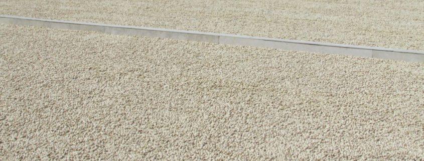 pistachio suppliers in iran