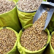 bulk buy pistachio nuts