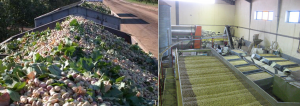 tabriz pistachio supplier iran
