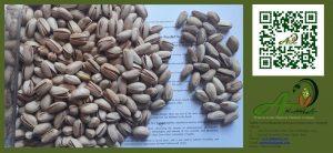 picture (1): Akbari pistachios 22-24