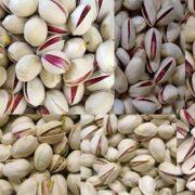 pistachio company in iran