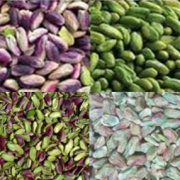 bulk buy pistachio kernels