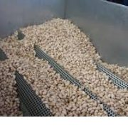 buy pistachios bulk from iran
