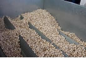 buy pistachios bulk from iran