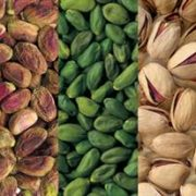 iranian pistachio in canada