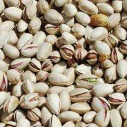 organic raw pistachios in shell