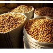 pistachios for sale bulk