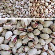 iranian pistachios for sale in bulk