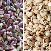 buy iranian pistachio nuts