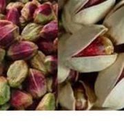 Iran pistachio export statistics