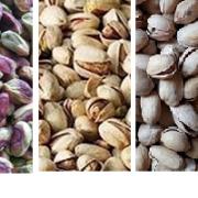 Iran pistachio wholesale price