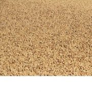 Iran pistachios sale bulk