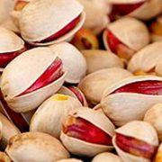 Persian pistachios for sale in bulk