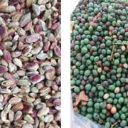 Wild pistachio kernels