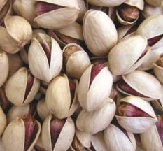 buy persian pistachios in bulk