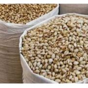 buy pistachios in bulk with big packing