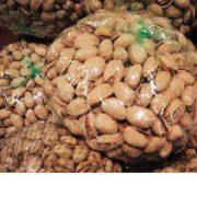 iran pistachio bulk sales