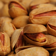iranian lemon pistachios suppliers