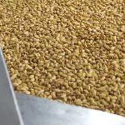 iranian pistachios bulk for sale