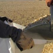 pistachio nuts price per ton in pakistan