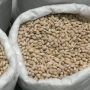 pistachio price in tehran