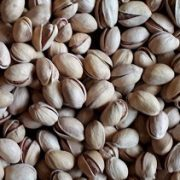 wholesale pistachio price in Russia