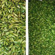 bulk buy slivered pistachios