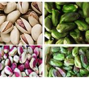 green pistachio nuts sale