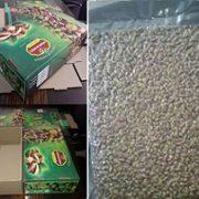 buy pistachio in bulk