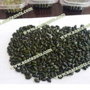 green peeled pistachio kernel price