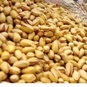 lemon pistachio nuts for sale