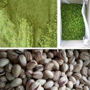 qazvin pistachio wholesale