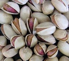 unsalted pistachios bulk