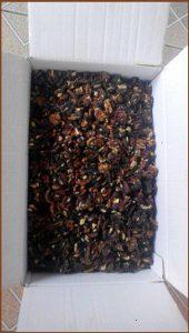 Black walnut kernels