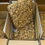 buy vacuum walnut kernels