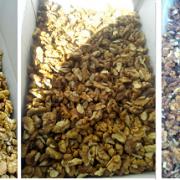 buy walnut kernels online