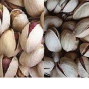 fandoghi round pistachio price (2)
