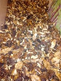 walnut kernels lowest price