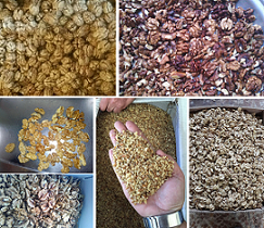 walnuts kernel price