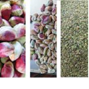 Buy raw pistachio kernels