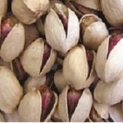 bulk pistachio kernels price per kg