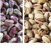 buy raw shelled pistachios