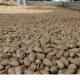 iranian pistachios uk country