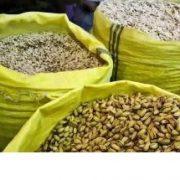 pistachios nuts for sale bulk