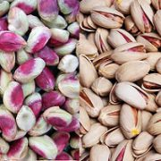 pistachio nuts biggest producer