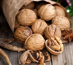 shelled walnut kernels price