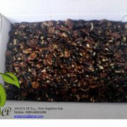 black walnut kernels price