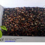 black walnut kernels price